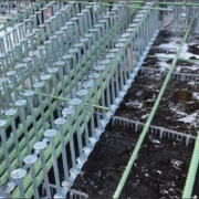SureBuilt Stud Rail for shear load transfer in concrete